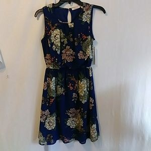 Floral Sheer Sleevless Juniors Dress